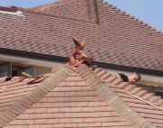 guernsey roof dragon multi side roof thumb