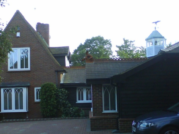 Ridge dragon installed on extension roof